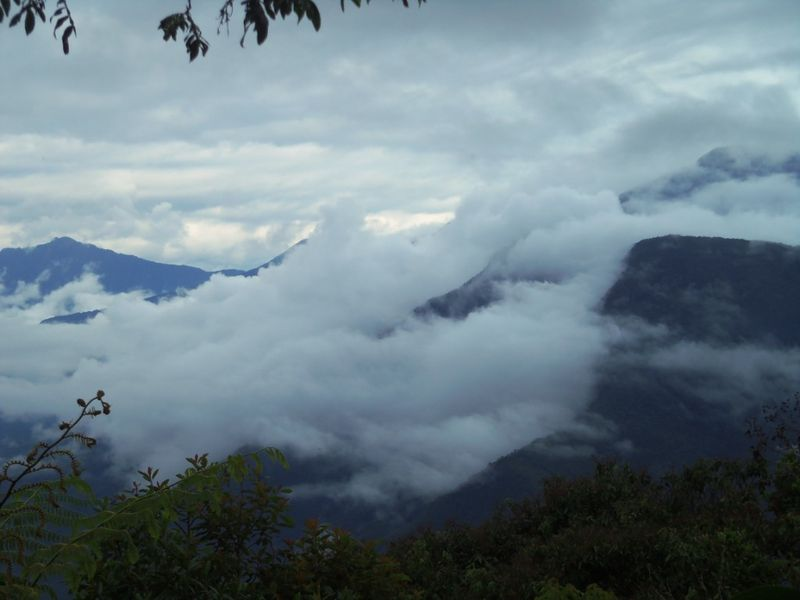 A view of the cloud forest from Sol y Luna, Coroico, compressed