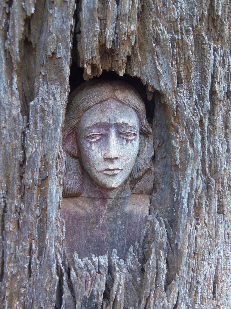 Girl in tree compressed
