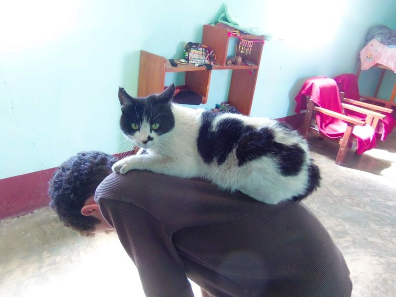 Jacky and cat in santusa's living room compressed