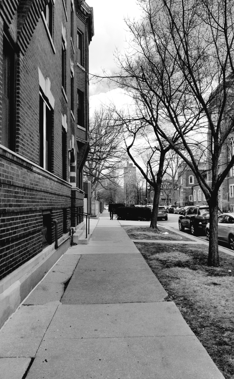 56th Street  Chicago  March 3  2020  3.30 pm